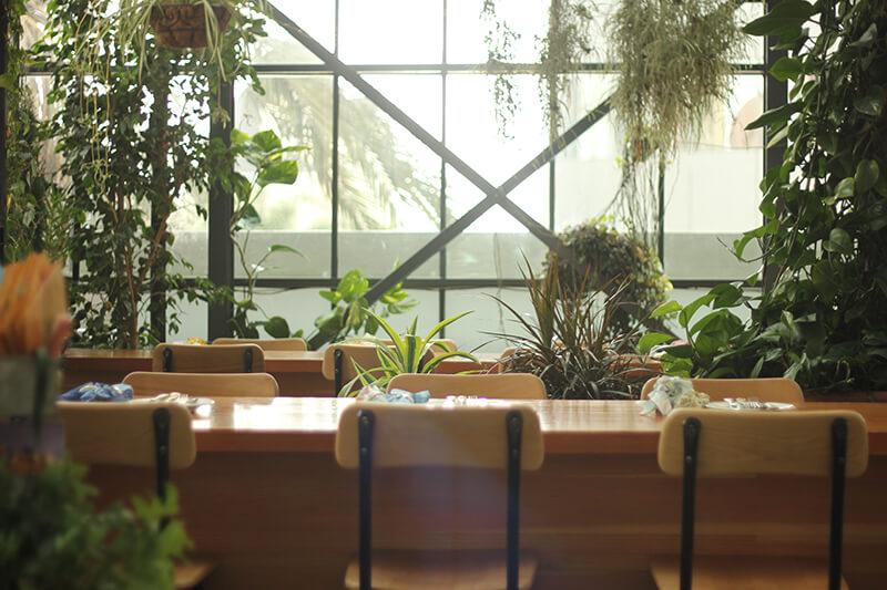 The Line Greenhouse Restaurant
