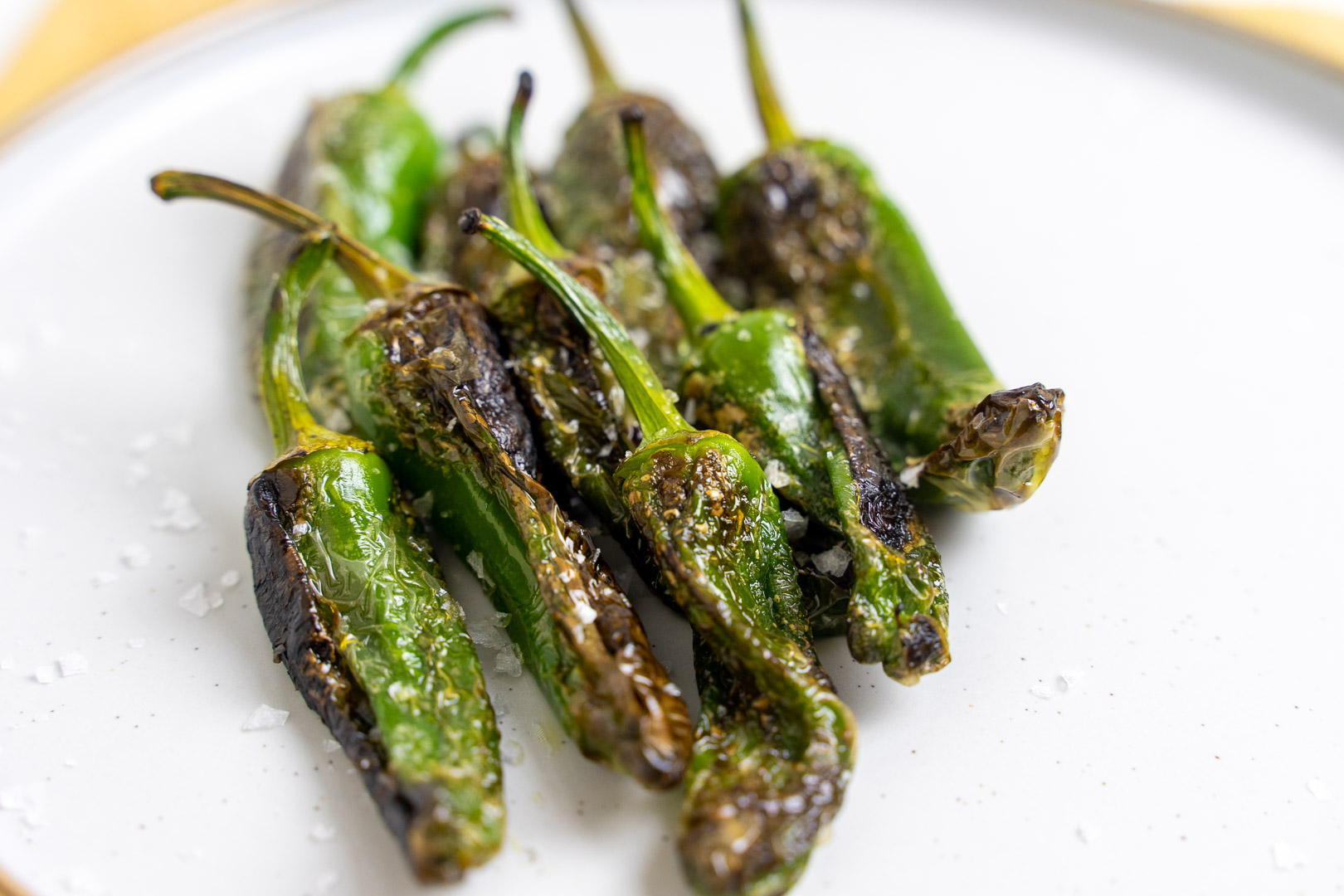 Padron Peppers Recipe